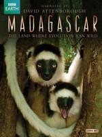 馬達加斯加 (Madagascar) [Disc 1/2][台版]