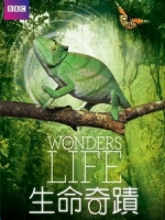 生命奇蹟 (Wonders of Life) [Disc 2/2][台版]