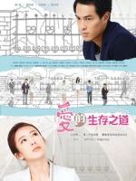 [台] 愛的生存之道 (The Pursuit of Happiness) (2013)
