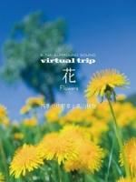 實境之旅 - 花 (Virtual Trip - Flowers)