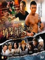 [中] 3D 搏擊迷城 (Lost In Wrestling 3D) (2014) <2D + 快門3D>[港版]