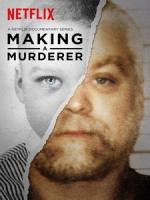 [英] 製造殺人犯/謀殺犯的形成 第一季 (Making A Murderer S01) (2015)[台版字幕]