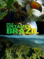 [英] 野性巴西 (Wild Untamed Brazil) (2014)[台版字幕]
