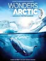 奇幻冰極 3D (Wonders of the Arctic 3D) <2D + 快門3D>