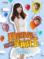 [陸] 極品女士 第 一二三四 季 (Wonder Lady S01-S04) (2013-2015)