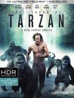 [英] 泰山傳奇 (The Legend of Tarzan) (2016)[台版]
