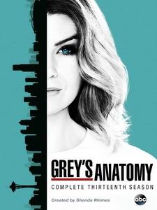 [英] 實習醫生 第十三季 (Grey s Anatomy S13) (2016) [Disc 2/2]