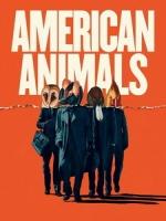 [英] 美國動物 (American Animals) (2018)[台版字幕]