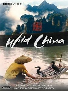 錦繡中華/神秘中國 (Wild China) [Disc 2/2][台版]