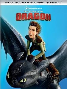 [英] 馴龍高手 (How to Train Your Dragon) (2010)[台版]