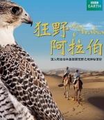 狂野阿拉伯 (Wild Arabia) (2013)[台版字幕]