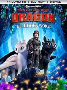 [英] 馴龍高手 3 (How to Train Your Dragon - The Hidden World) (2018)[台版字幕]