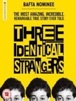 [英] 孿生陌生人 (Three Identical Strangers) (2018)[台版字幕]