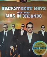 新好男孩 演唱會 合集 (BackStreet Boys Collection)