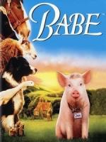 [英] 我不笨,我有話要說 (Babe) (1995)[台版]