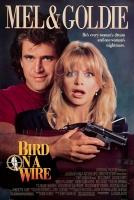[英] 驚弓之鳥 (Bird on a Wire) (1990) [台版字幕]