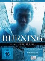 [韓] 燃燒烈愛 (Burning) (2018)[台版字幕]