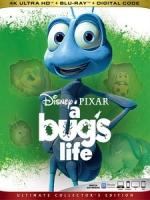 [英] 蟲蟲危機 (A Bug s Life) (1999) [台版字幕]