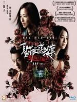 [中] 聖荷西謀殺案 (Fatal Visit) (2018)